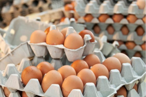 Afrekenen met het grote eierschandaal