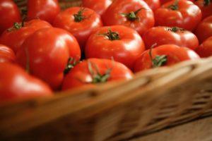Kijken met Kim: Tamagochi tomaatje