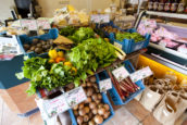 Kijken met Kim: Lowfood nieuwe foodreligie